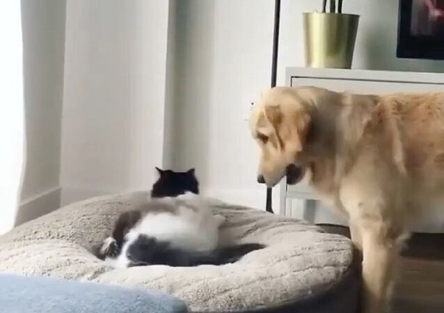 I think you'll find that's mine.