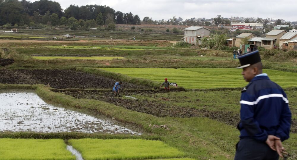 A police officer in a French-style uniform watches over rice fields in Madagascar