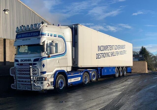 Lorry with the slogan Brexit carnage