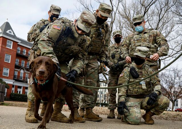Members of the National Guard greet a dog while they spend time in Lincoln Park in Washington D.C., days ahead of U.S. President-elect Joe Biden's inauguration, U.S. January 18, 2021