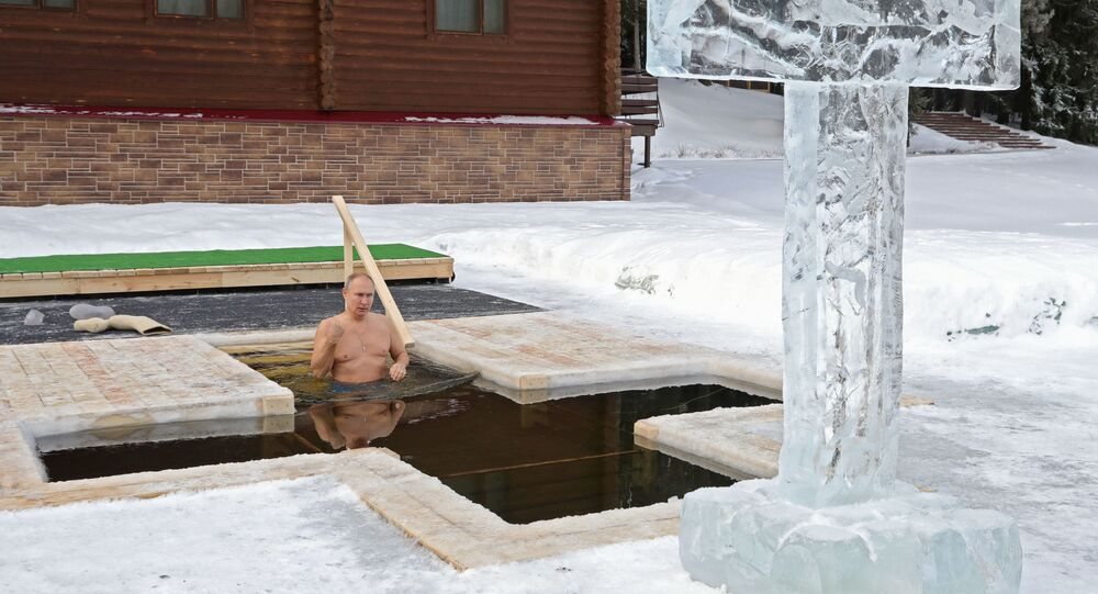 Russian President Vladimir Putin takes a dip during celebrations of the Orthodox Christian feast of Epiphany in Moscow region, Russia