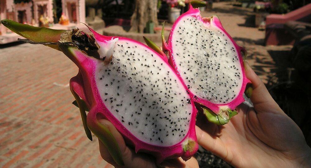 Gujarat Govt renames dragon fruit as Kamalam; here's the reason