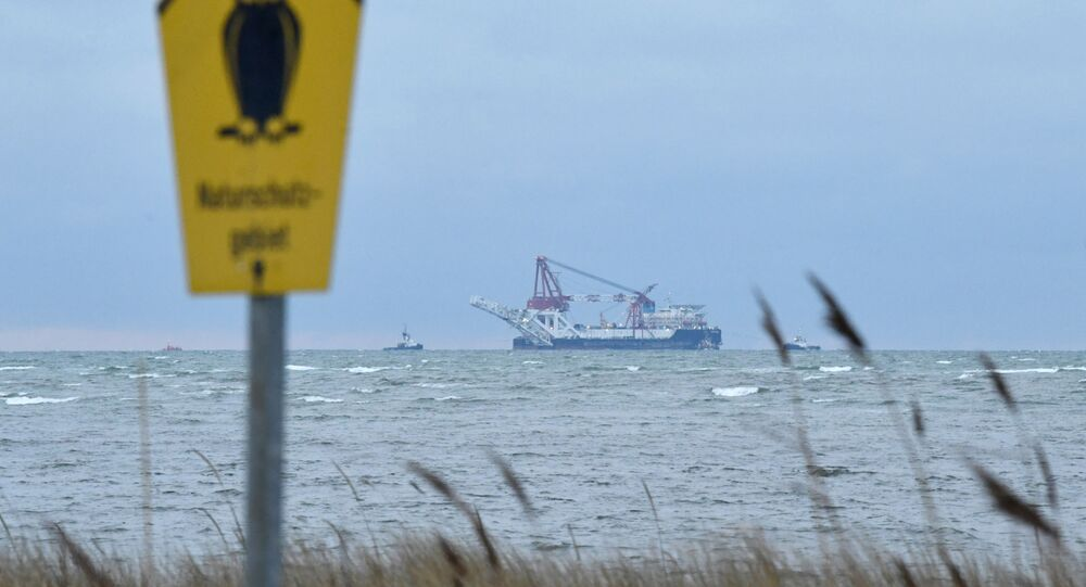 The Russian pipe-laying ship Fortuna is seen in the Mecklenburg Bay ahead of the resumption of Nord Stream 2 gas pipeline construction near Insel Poel, Germany January 14, 2021.