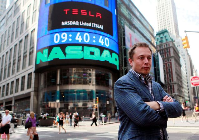 CEO of Tesla Motors Elon Musk poses during a television interview after his company's initial public offering at the NASDAQ market in New York, June 29, 2010.
