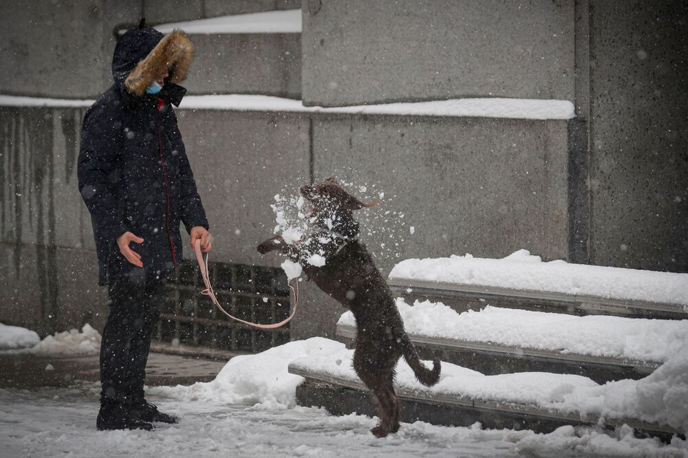A dog plays in the snow during a snow storm in the Manhattan borough of New York City, New York, U.S., 1 February 2021.