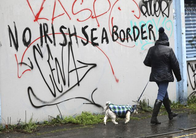 A woman walks her dog past past graffiti with the words 'No Irish Sea Border' in Belfast city centre, Northern Ireland, 3 February 2021