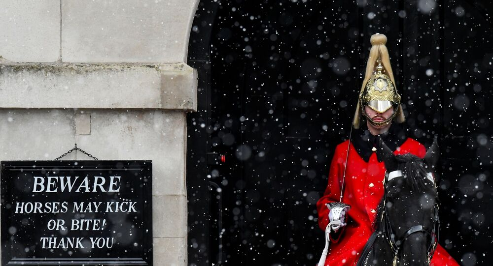 A member of the Household Cavalry is seen at their post in Horseguards, as Storm Darcy affects large parts of the country, in London, Britain, February 9, 2021