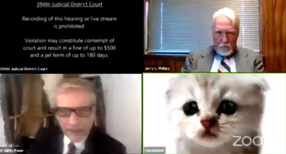 Attorney Rod Ponton appeared as a kitten during a court hearing