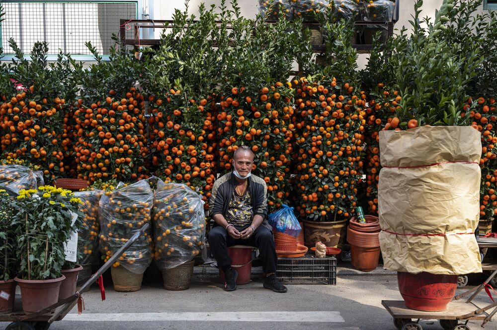 A man sits in the middle of his merchant stall at the Spring Festival Flower Fair in Hong Kong.