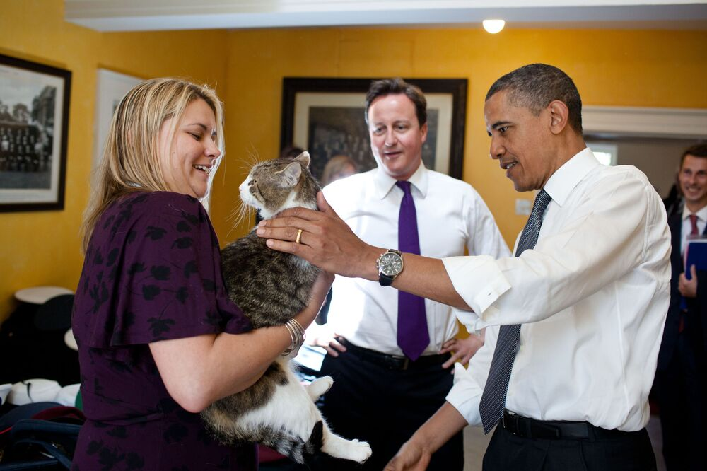 British Prime Minister David Cameron introduces President Barack Obama to Larry the cat at 10 Downing Street in London, England, 25 May 2011.