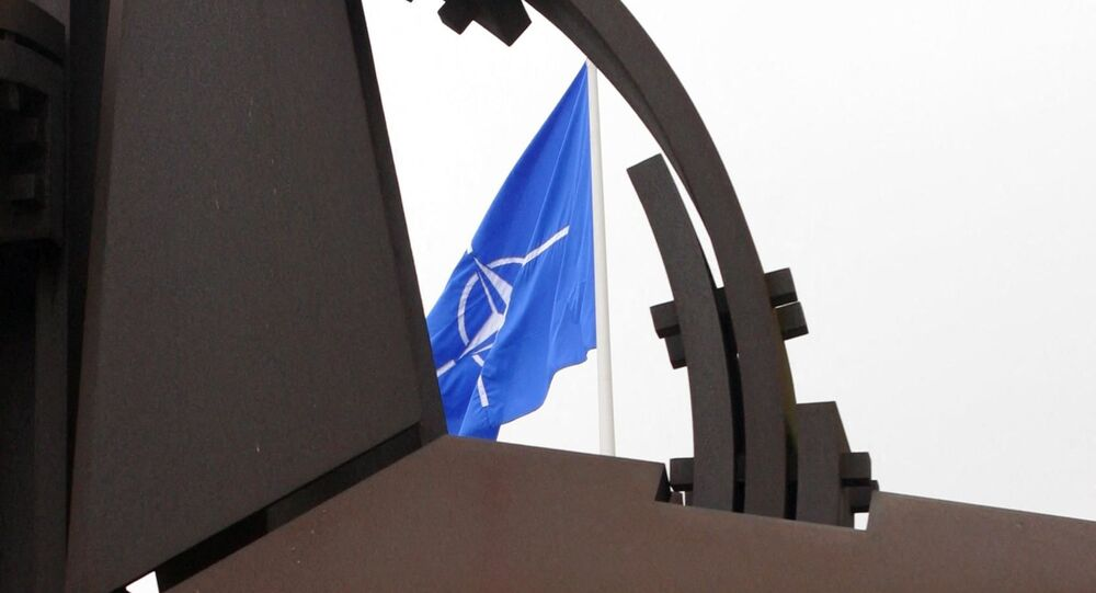 A NATO flag and sculpture (File
