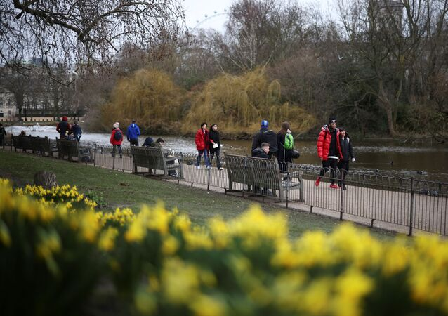 People walk past daffodils in St James's Park, amid the coronavirus disease (COVID-19) outbreak in London, Britain February 19, 2021.