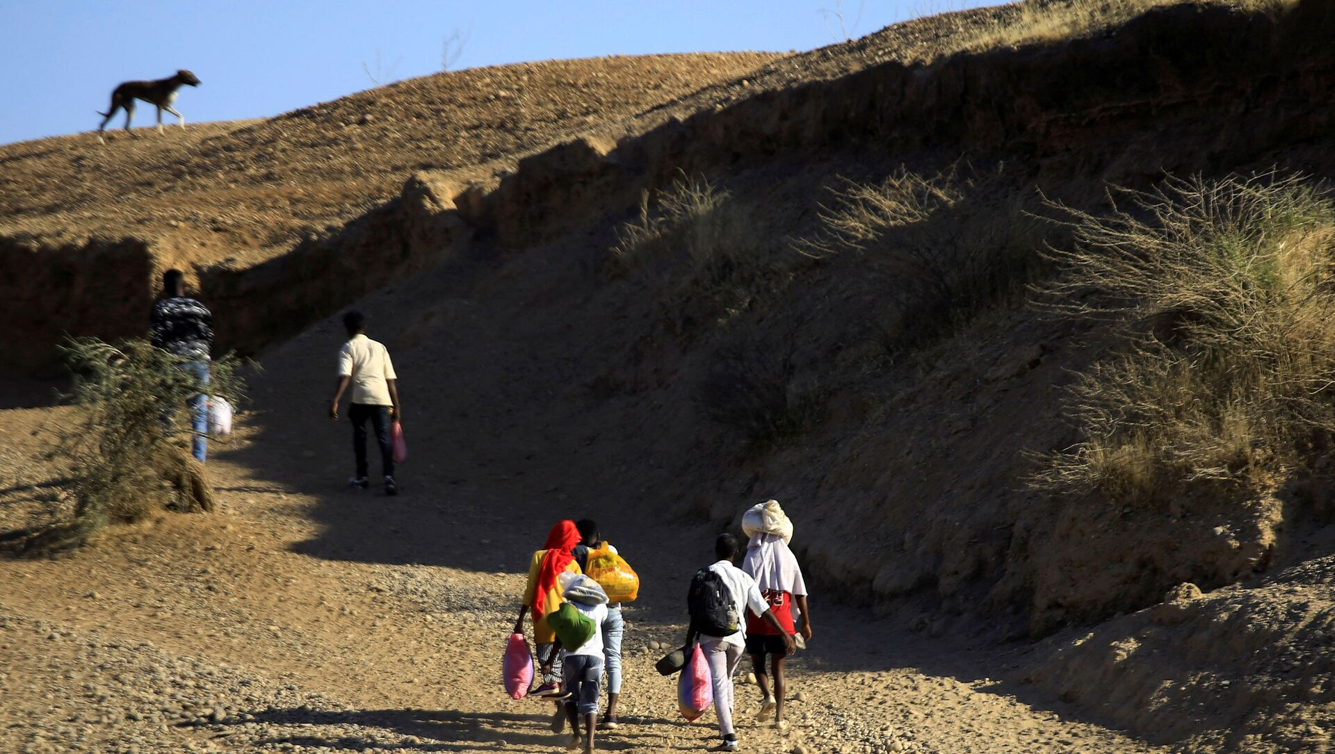 Ethiopians, who fled the ongoing fighting in Tigray region, carry their belongings after crossing the Setit River on the Sudan-Ethiopia border, in the eastern Kassala state, Sudan December 16, 2020. REUTERS/Mohamed Nureldin Abdallah/File Photo - Sputnik International, 1920, 24.05.2021