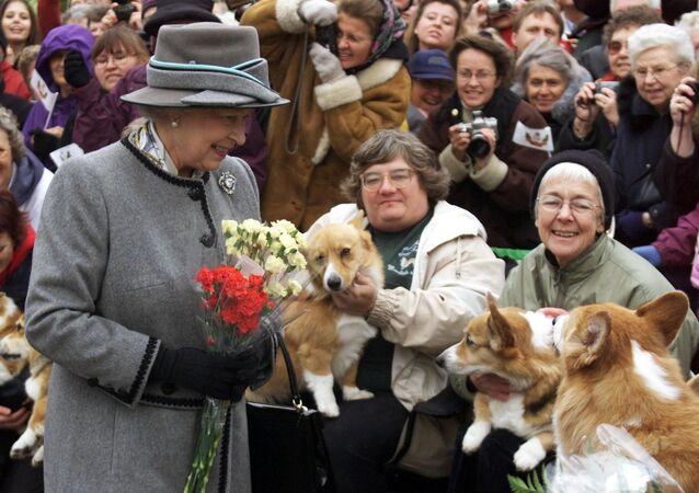 Queen Elizabeth II talks with members of the Manitoba Corgi Association during a visit to Winnipeg 08 October 2002. The queen, making her 20th trip to Canada, is the last stop on the year-long jubilee tour celebrating her 50-year reign.