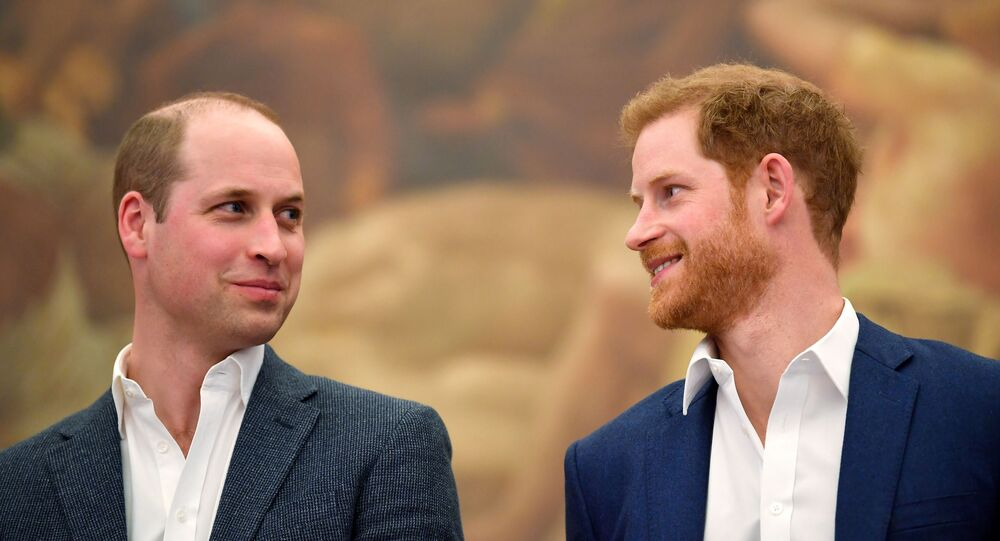 Britain's Prince William and Prince Harry attend the opening of the Greenhouse Sports Centre in central London, April 26, 2018