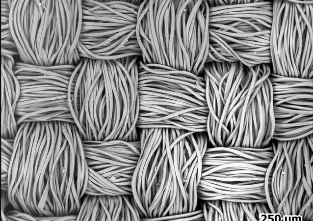 A top-down view of a polyester face mask - showing the fibres nicely bundled - after being photographed with a scanning electron microscope, is seen in an undated image released 9 March 2021. The scale is 250 micrometres, or millionths of a metre, wide.
