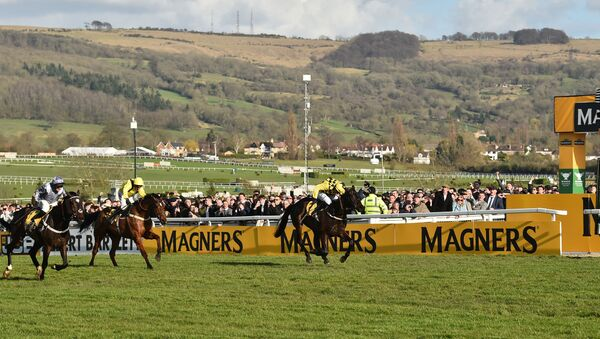 Jockey Paul Townend (1st-R) rides Al Boum Photo as he crosses the finish line to win the Gold Cup race on the final day of the Cheltenham Festival horse racing meeting at Cheltenham Racecourse in Gloucestershire, south-west England, on March 13, 2020. - Sputnik International