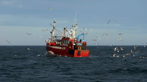 Guls surround a fishing trawler as it works in the North Sea, off the coast of North Shields, in northeast England on January 21, 2020 - Sputnik International