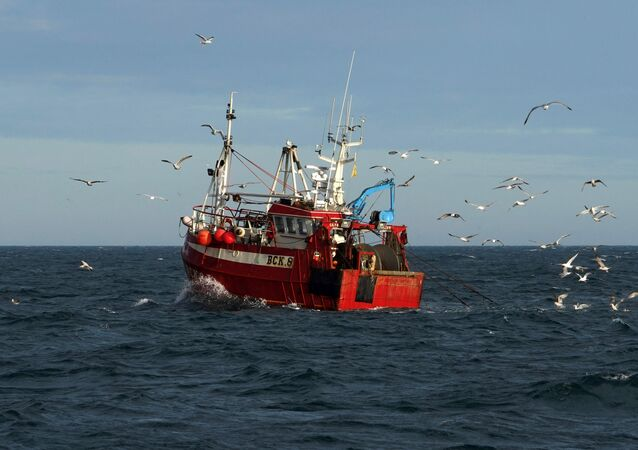 Guls surround a fishing trawler as it works in the North Sea, off the coast of North Shields, in northeast England on January 21, 2020