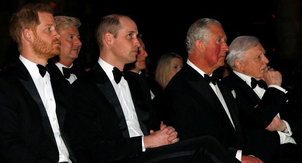 Britain's Prince Harry, Duke of Sussex (L), Britain's Prince William, Duke of Cambridge (3rd L), Britain's Prince Charles, Prince of Wales (2nd R) and British naturalist, documentary maker and broadcaster David Attenborough (R) take their seats for the Global Premiere of Our Planet in London on April 4, 2019.
