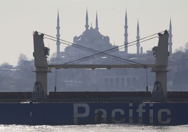 A merchant ship crosses the Bosporus in Istanbul, Friday, March 24, 2017.