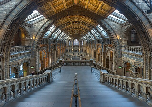 Natural History Museum Main Hall, London, UK