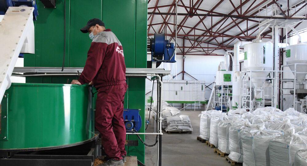 Wood Fuel Pellet Plant