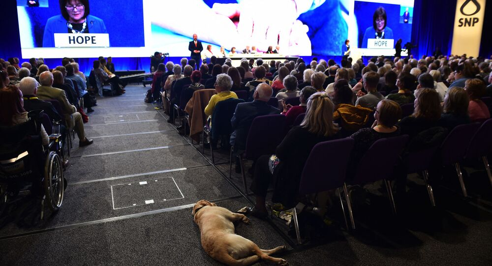 A dog sleeps in the aisle as delegates listen on the final day of the Scottish National Party (SNP) Spring conference in Edinburgh on April 28, 2019