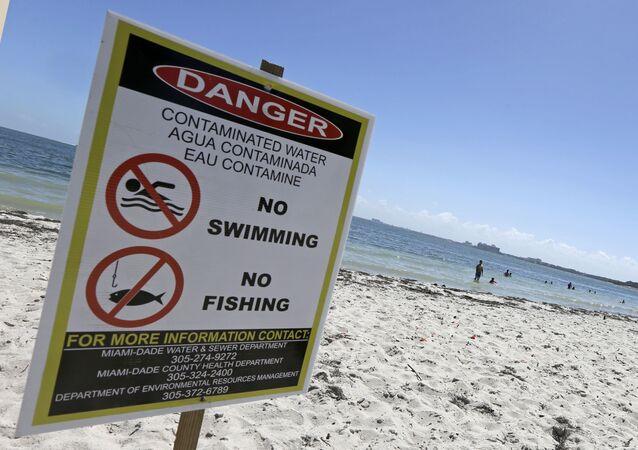 Beachgoers enjoy a day at the beach despite a swimming advisory at Hobie Beach in Miami, 6 July 2016.