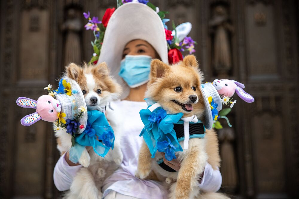 A woman carries dogs in costume during the Easter Bonnet parade on Fifth Avenue in midtown on 4 April 2021 in New York City.