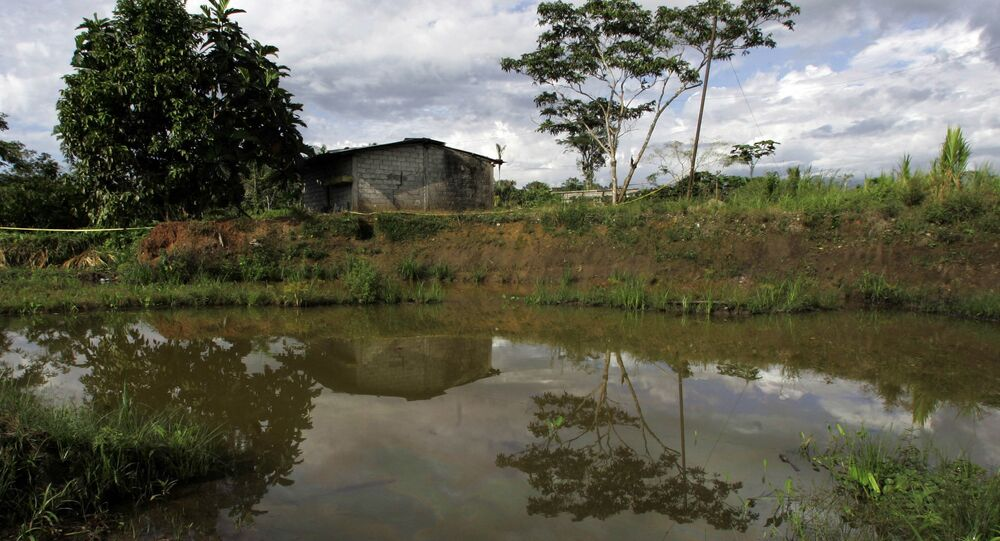 Oil floats in the water near a home in Lago Agrio, Ecuador on Aug. 4, 2008. Ecuador's President Rafael Correa has sided squarely with the 30,000 plaintiffs, Indians and colonists, in a class-action suit, dubbed an Amazon Chernobyl by environmentalists, over the slow poisoning of a Rhode Island-sized expanse of rainforest with millions of gallons of oil and billions more of toxic wastewater.