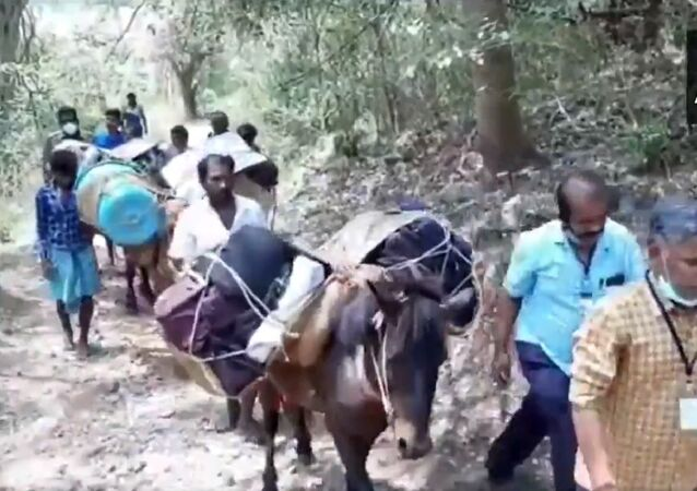 How do you like that, Elon Musk? Donkeys carry EVMs to villages in the Natham area of Dindigul district in Tamil Nadu, ahead of assembly elections tomorrow.