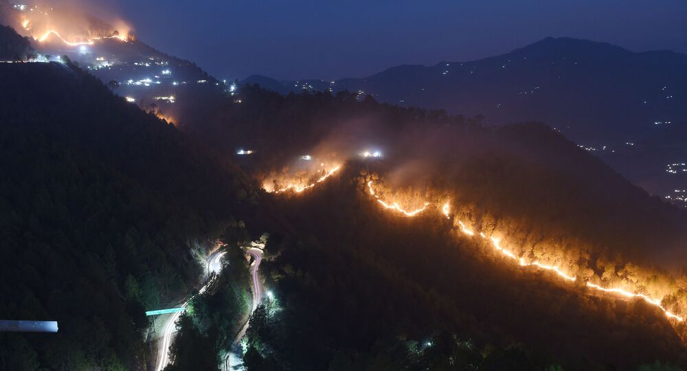 Wildfires burn in hills around New Tehri at Bourari in the Indian state of Uttarakhand  (File)
