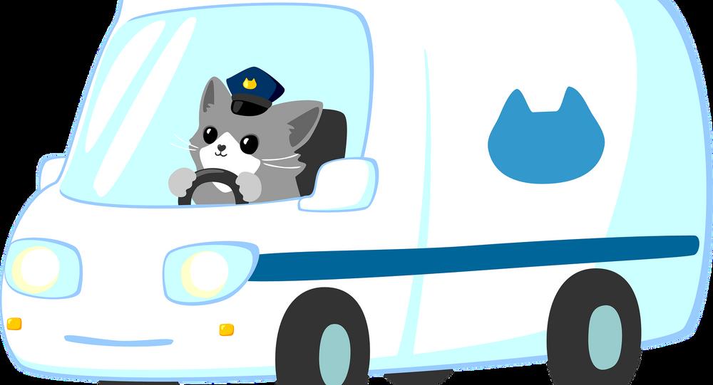 Cat police