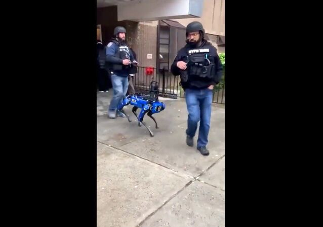 Screenshot captures moment that officers with the New York Police Department tapped on the services of a Boston Dynamics Digidog during a dispatch response to a Manhattan public housing residence.
