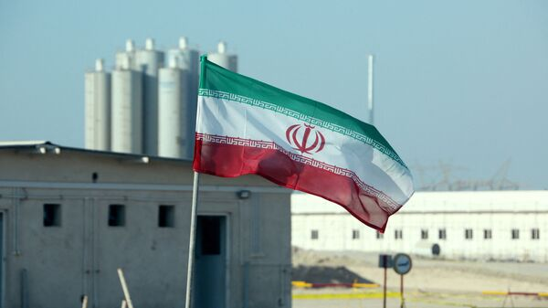 A picture taken on November 10, 2019, shows an Iranian flag in Iran's Bushehr nuclear power plant, during an official ceremony to kick-start works on a second reactor at the facility - Sputnik International
