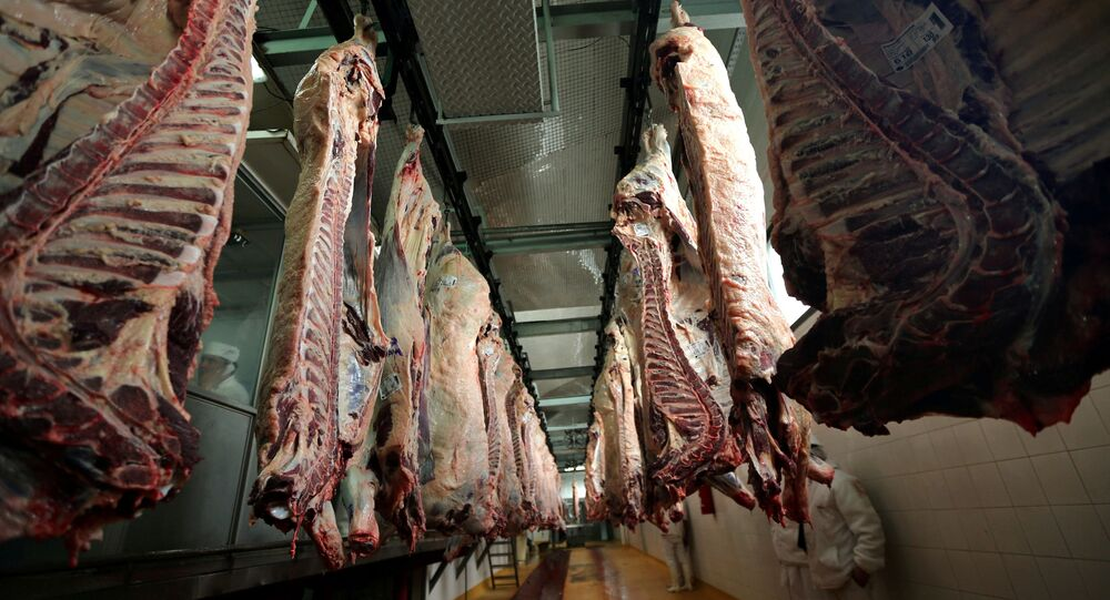 Beef carcasses hanging up at an abattoir in Argentina.