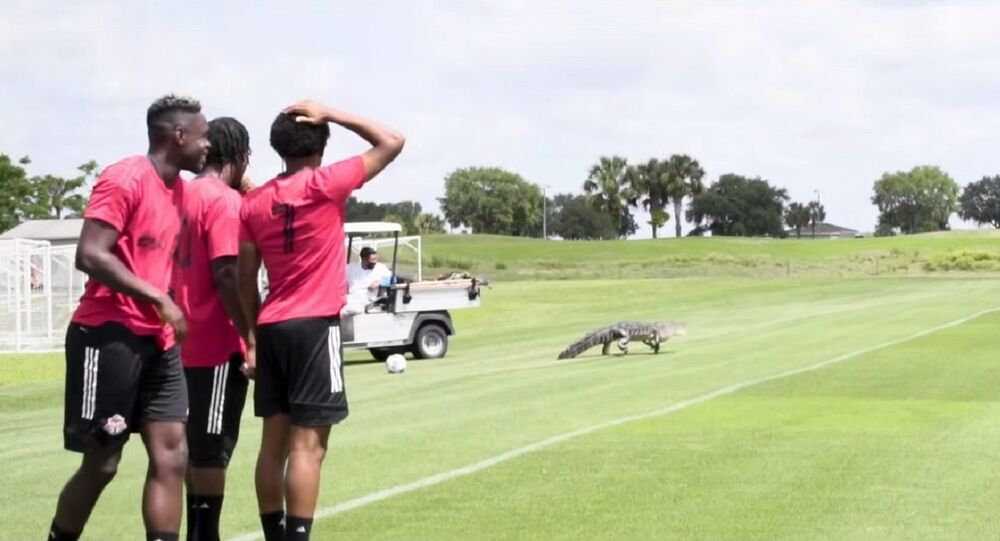 Gator Country | All For One: Moment presented by Bell