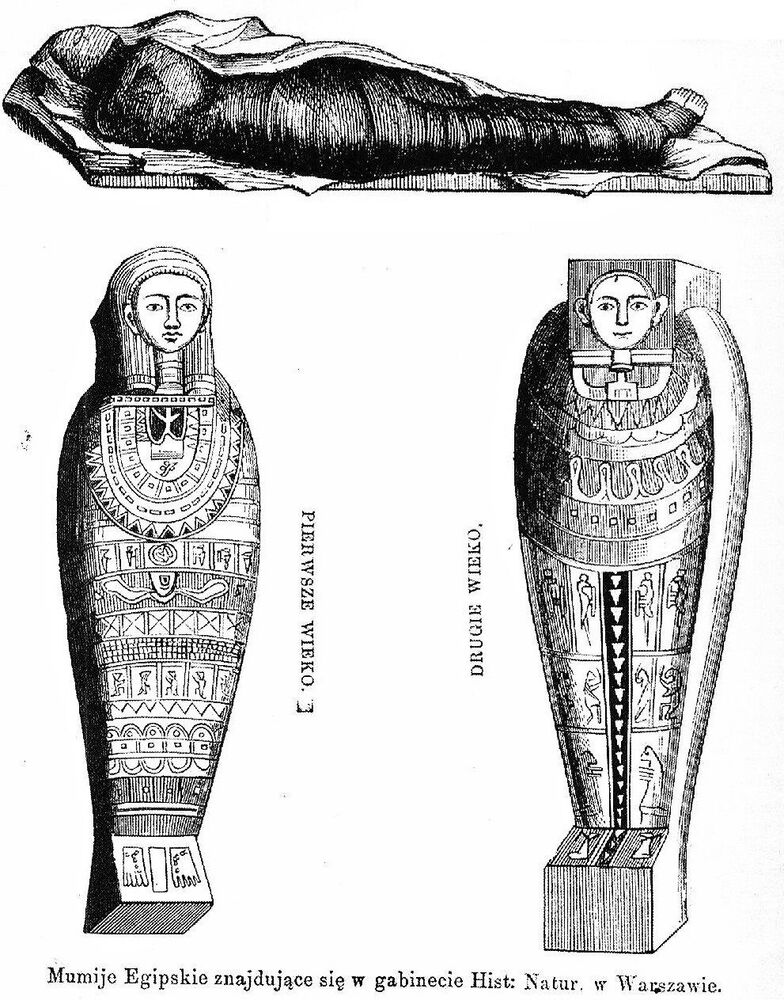 The study has shed more light on aspects of how pregnancy was interpreted in the context of Egyptian religion and burial traditions.