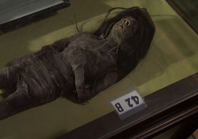 """Screenshot captures the tsantsa that was featured in John Houston's 1979 movie """"Wise Blood."""" The item was recently confirmed as having been made of human remains."""