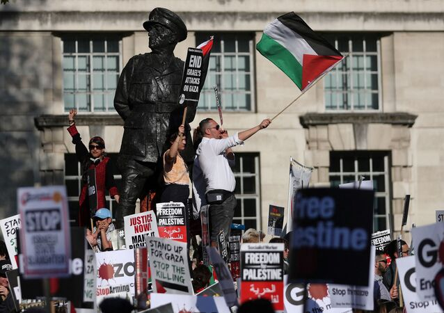 Pro-Palestine demonstrators hold placards and wave flags during a protest opposite the entrance to Downing Street in central London on 15 May 2018.