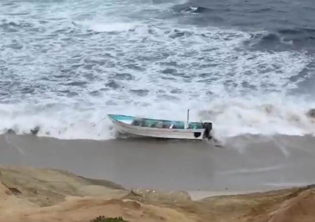 here's video of the panga... officials have it docked at Children's Pool