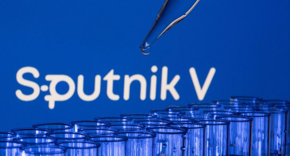 est tubes are seen in front of a displayed Sputnik V logo in this illustration taken, May 21, 2021.