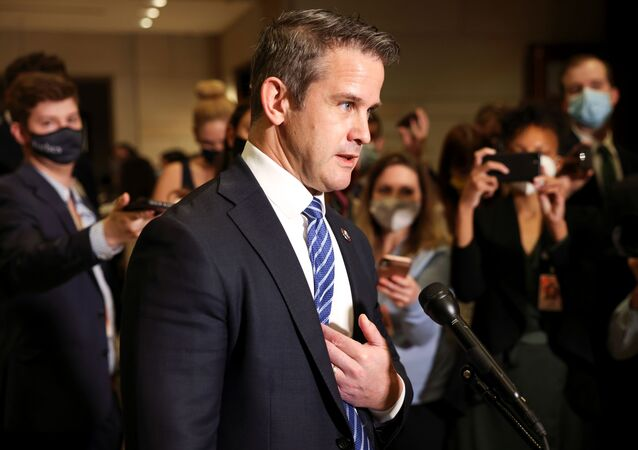 Representative Adam Kinzinger (R-IL) speaks to the media as he arrives on Capitol Hill in Washington, U.S., May 12, 2021