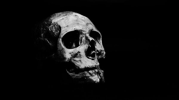Skull on grayscale - Sputnik International