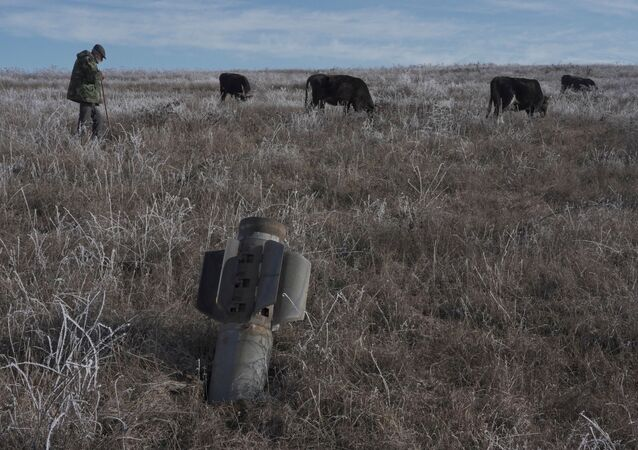 A man shepherds his cows near a rocket case left after a military conflict over Nagorno-Karabakh region, outside Stepanakert January 6, 2021.