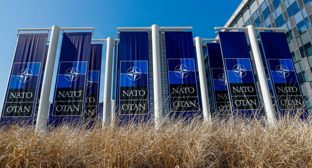 FILE PHOTO: Banners displaying the NATO logo are placed at the entrance of new NATO headquarters during the move to the new building, in Brussels, Belgium April 19, 2018.  REUTERS/Yves Herman/File Photo