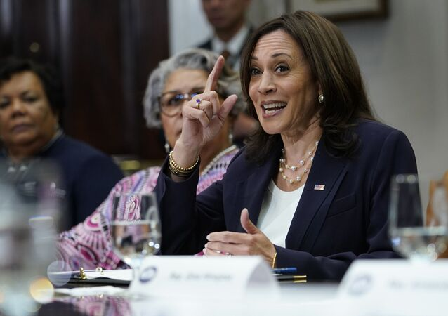 Vice President Kamala Harris speaks during a meeting with members of the Texas State Senate and Texas House of Representatives in the Roosevelt Room of the White House in Washington, Wednesday, June 16, 2021