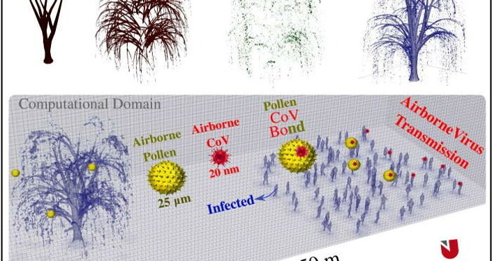 Top: computational modeling of a willow tree showing the trunk, stems, leaves, and the 3D tree model. Bottom: computational domain (50×20×20m3) that includes the tree model and a crowd of people (97 individual including some infected persons) illustrating the potential of airborne virus transmission through a pollen-CoV bond potential. The crowd's boundary is positioned at a distance of 20 m away from the tree's boundary. The clustering of people in the crowd respects, in general, the minimum social distance of 2 m.