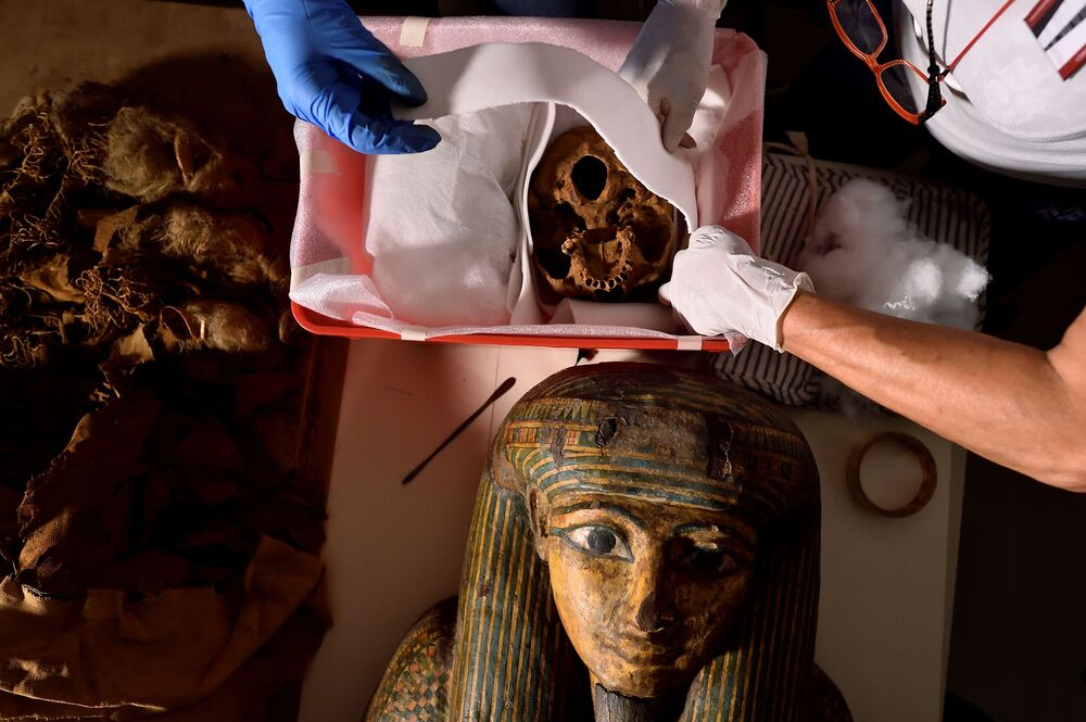 Which kinds of products were used to mummify the body? - That is one of the main research goals.